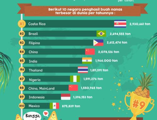 Infografis Penghasil Buah Nanas Dunia