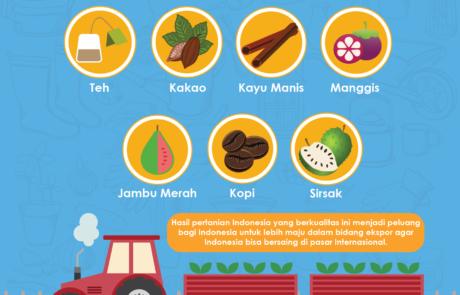 Infografis hasil pertanian indonesia tokopresentasi.com